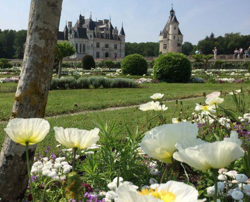 Van Amboise naar Chenonceau